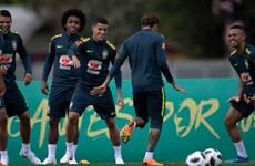 """Đội tuyển Brazil - """"người khổng lồ"""" tỉnh dậy sau cú tát lịch sử"""