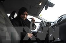 Saudi Arabia chính thức cấp giấy phép lái xe ôtô cho phụ nữ