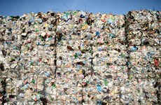 ILO kêu gọi hạn chế sử dụng các loại đồ nhựa dùng một lần