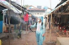 Bệnh sốt xuất huyết vẫn tiềm ẩn nhiều nguy cơ bùng phát dịch
