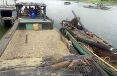 Khai thác cát trái phép gây sạt lở ven sông Vàm Cỏ Đông