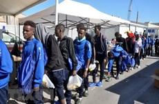 Italy cấm tàu chở người di cư của các tổ chức phi chính phủ cập cảng