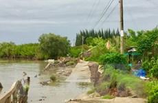 Sạt lở liên tiếp gây thiệt hại nhiều tỷ đồng tại tỉnh Cà Mau