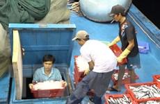 """""""Thẻ vàng"""" đối với ngành xuất khẩu hải sản: Tìm cơ hội từ thách thức"""