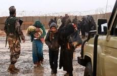 Jordan và Israel tăng cường viện trợ nhân đạo cho người tị nạn Syria