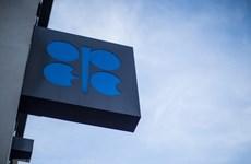 Tổng thống Mỹ cáo buộc OPEC thao túng thị trường dầu mỏ thế giới
