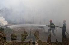 Hà Nam: Cháy rừng dữ dội giữa lúc thời tiết nắng nóng hơn 38 độ C