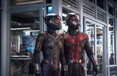 """""""Ant-Man and the Wasp"""" ra mắt hoành tráng hơn cả phần một"""