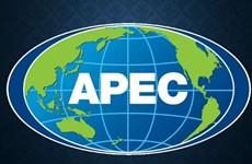 Những chủ đề chính được ưu tiên trong Năm APEC 2019 tại Chile
