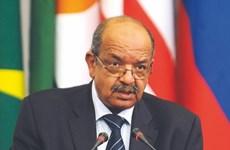 Phát triển hơn nữa mối quan hệ hợp tác giữa Việt Nam và Algeria