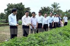 Phó Thủ tướng Vương Đình Huệ làm việc tại tỉnh Điện Biên