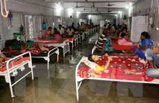 Chủ tịch nước gửi điện thăm hỏi về tình hình trận lụt ở Ấn Độ