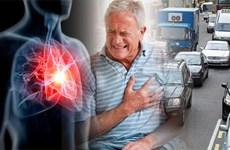 Tìm ra mối liên hệ giữa ô nhiễm không khí và cấu trúc của tim