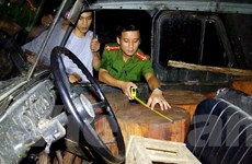 Điều tra làm rõ vụ vận chuyển trái phép gỗ quý cấm khai thác