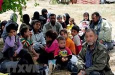 Nguy cơ dòng người di cư bất hợp pháp vào châu Âu tăng cao