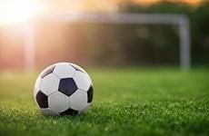 Khởi tranh giải bóng đá cộng đồng người Việt tại Nga năm 2018