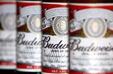 Hàn Quốc nhập khẩu lượng bia kỷ lục từ Mỹ trong 6 tháng đầu năm