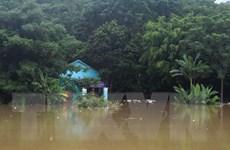 Thanh Hóa: Hoàn lưu bão số 4 gây nhiều thiệt hại, 1 người chết