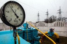 Thủ tướng Ukraine Volodymyr Groysman: Kiev có thể tăng giá khí đốt