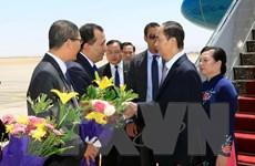 Hình ảnh Chủ tịch nước Trần Đại Quang và phu nhân thăm Ai Cập