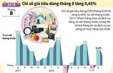 [Infographics] Chỉ số giá tiêu dùng tháng 8 tăng 0,45%