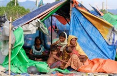 Tổng Thư ký LHQ quan ngại về khủng hoảng nhân đạo tại Myanmar