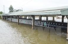 Xả đập kiểm soát lũ sông Cửu Long và vùng Tứ giác Long Xuyên