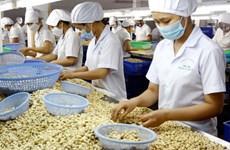 Triển khai giải pháp phát triển sản xuất, thúc đẩy xuất khẩu