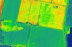 Bản đồ mùa màng đầu tiên trên thế giới từ hình ảnh vệ tinh