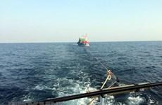 Đưa 6 ngư dân và tàu cá bị nạn trên vùng biển Hoàng Sa vào bờ an toàn