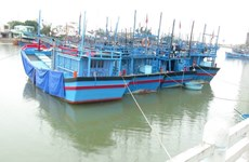 Nam Định cấm biển, khẩn trương kêu gọi tàu thuyền tránh bão