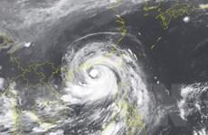 Bão số 6 gió giật cấp 17, biển động dữ dội, sóng cao 3-4 mét