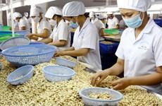 Cơ hội kết nối doanh nghiệp Việt Nam với thị trường Bulgaria