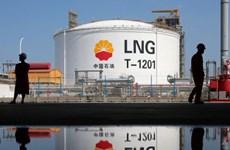 Giao thương về năng lượng vẫn mạnh bất chấp căng thẳng Mỹ-Trung