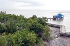Phát triển du lịch rừng ngập mặn kết hợp nuôi trồng thủy sản