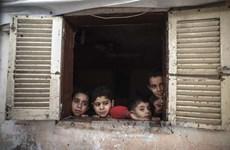 Cơ quan tị nạn Palestine được cam kết viện trợ hàng trăm triệu USD