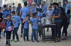 EU cung cấp thêm kinh phí cho Cơ quan về người tị nạn Palestine