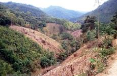 Rừng, đất rừng tại Đắk Lắk bị lấn chiếm trái phép ngày càng nhiều