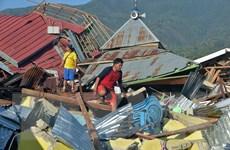 Thiết lập nơi trú ẩn cho nạn nhân động đất-sóng thần ở Indonesia