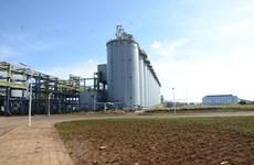 Alumin Nhân Cơ điều chỉnh kế hoạch, nâng sản lượng lên 650.000 tấn