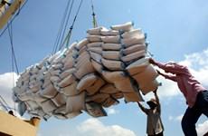 Việt Nam xuất 5 triệu tấn gạo trong 9 tháng, nhiều nhất vào Trung Quốc