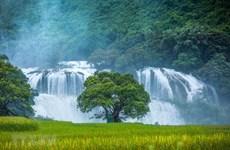 Nhiều hoạt động hấp dẫn tại Lễ hội du lịch thác Bản Giốc ở Cao Bằng