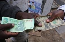 Zimbabwe bắt giữ 107 người buôn bán ngoại tệ bất hợp pháp