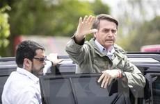 Các nước châu Mỹ chúc mừng Tổng thống đắc cử Brazil Bolsonaro