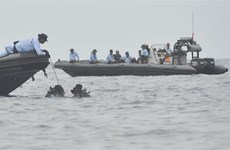 Rơi máy bay tại Indonesia: Hộp đen vẫn trong tình trạng nguyên vẹn