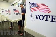 Bầu cử Quốc hội Mỹ giữa nhiệm kỳ: Bang Florida yêu cầu kiểm lại phiếu