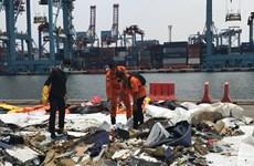 Indonesia sẽ công bố báo cáo sơ bộ về vụ máy bay Lion Air gặp nạn
