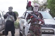 Nigeria: Đi kiếm củi, hàng chục người bị Boko Haram bắt cóc