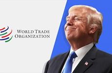 Chính sách của Tổng thống Trump và tương lai vô định của WTO