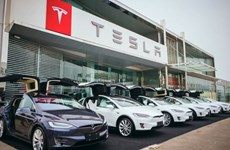 Doanh số bán ôtô của Tesla giảm 70% vì cuộc chiến thương mại Mỹ-Trung